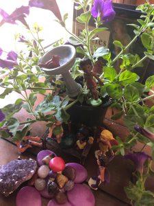 Diversify Fairy Garden 2