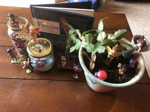 Diversify Fairy Garden 4