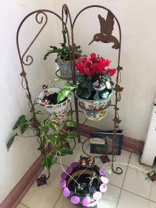Diversify Fairy Garden 5
