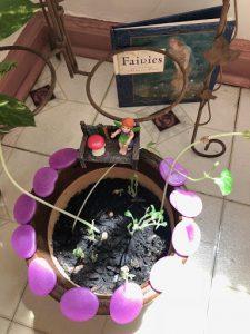 Diversify Fairy Garden 6