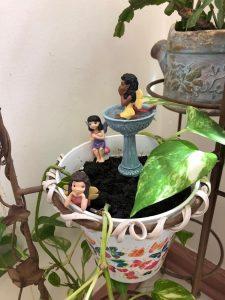 Diversify Fairy Garden 8