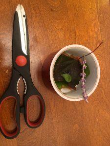 Nature Bracelet 1