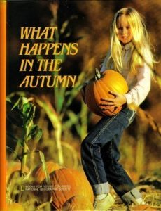 What happens in the Autumn