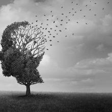 Conozca Las 10 Señales del Alzheimer